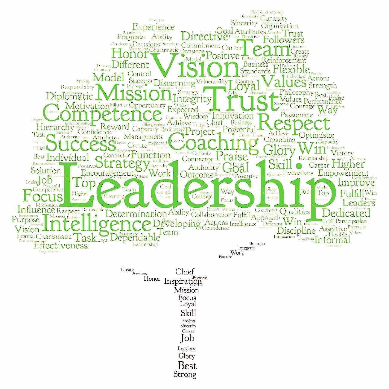Leadership = what is leadership?