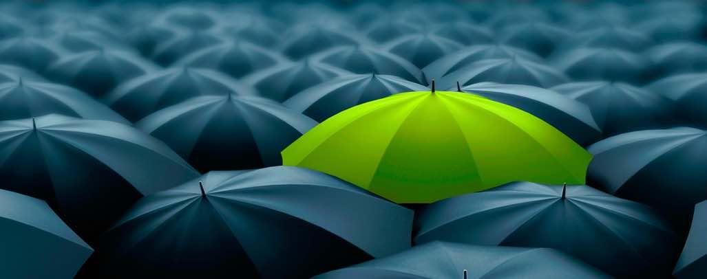 Green Umbrella with many black Umbrellas